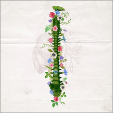 Wall sticker  Floral Spine - Sybille Sterk