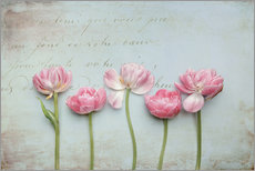 Gallery print  Vintage Tulips - Lizzy Pe