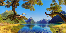 Michael Rucker - Look in the Milford Sound New Zealand