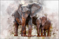 Gallery print  Elephants - Peter Roder