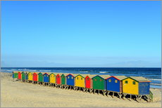 Gallery print  Colorful beach huts on the beach of Muizenberg - HADYPHOTO