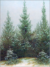 Gallery print  Fir Trees in Snow - Caspar David Friedrich