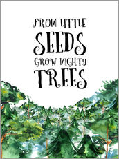 Wall Sticker  From little seeds grow mighty trees - RNDMS