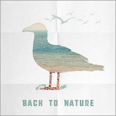 Wall sticker Back to nature - seagull