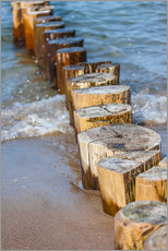 Wall Stickers  Groynes on the German Baltic Sea beach - Christian Müringer