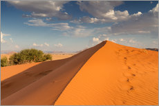 Gallery print  Orange Elim dune at Sossusvlei, Namibia, Africa - Circumnavigation