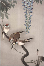 Wall sticker  Sparrows on wisteria - Ohara Koson