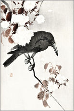 Wall sticker  Crow and Cherry Blossoms - Ohara Koson