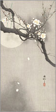 Wall sticker Plum Blossoms at Night
