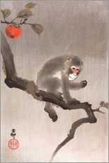 Wall sticker  Monkey in a Tree - Ohara Koson