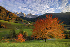 Wall sticker  Funes Valley in autumn, Dolomites, South Tyrol, Italy - Roberto Sysa Moiola