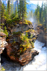 Wall sticker  Pure wilderness at Maligne Canyon in Jasper National Park, Canada - John Morris