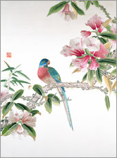 Gallery print  Jay on a flowering branch - Chinese School