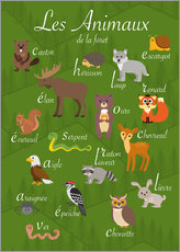 Gallery print  Forest animals - French - Kidz Collection