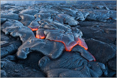 Gallery print  Lava Field on Big Island, Hawaii - Markus Ulrich