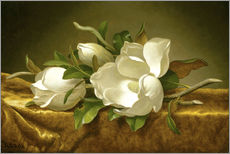 Wall sticker  Magnolias on Gold Velvet Cloth - Martin Johnson Heade