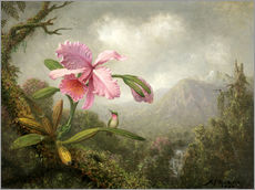 Wall sticker  Orchid and Hummingbird - Martin Johnson Heade