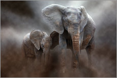 Wall sticker  Elephant with baby - Peter Roder