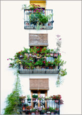 Wall sticker  Facade with balconies full of flowers in Valencia