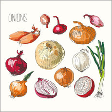 Wall sticker  Onions collage