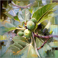 Gallery print  Wild Sicilian figs - Johnny Morant