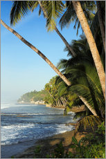 Gallery print  Palm Fringed Tropical Paradise Coastline - Paul Kennedy