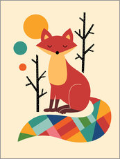 Gallery print  Rainbow Fox - Andy Westface