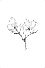 Wall sticker  Magnolia - Julia Bruch