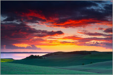 Gallery print  Rolling green hills and lake at sunset - Mark Scheper