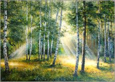 Wall sticker Sunlight in the green forest