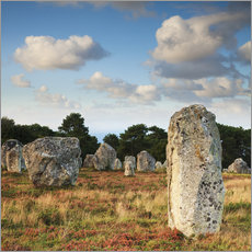 Wall sticker  Megaliths in Carnac