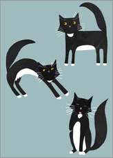 Wall sticker  Black cats with white paws - Nic Squirrell