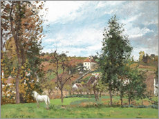 Gallery print  Landscape with a White Horse in a Meadow - Camille Pissarro