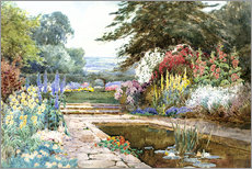 Gallery print  The lily pond - Theresa Sylvester  Stannard