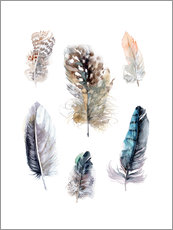 Verbrugge Watercolor - Feathers collection