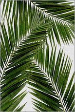 Wall Stickers  Palm Leaf III - Orara Studio