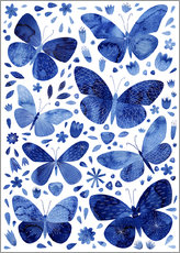 Gallery print  Butterflies China blue - Nic Squirrell