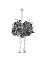 Gallery print  floral ostrich - Balazs Solti