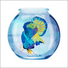 Wall Stickers  Fish in the glass - Goed Blauw