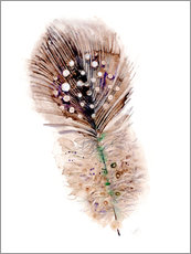 Wall sticker  Feather brown - Verbrugge Watercolor