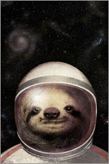 Wall Stickers  Space Sloth - Eric Fan