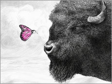 Eric Fan - Bison And Butterfly