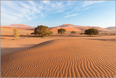 Wall sticker  Morning mist over sand dunes and Acacia trees at Sossusvlei, Namibia - Fabio Lamanna