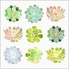 Gallery print  Spring Succulents - SpaceFrog Designs