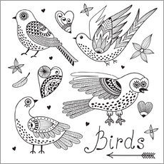 Colouring posters Lovely birds