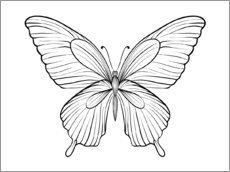 Colouring poster  Beautiful butterfly