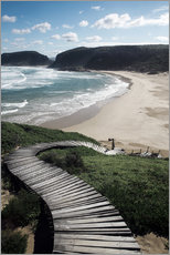 Wall sticker  Robberg Nature Reserve, South Africa - Paul Kennedy