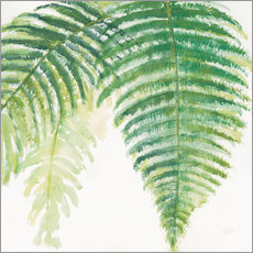 Wall sticker  Ferns III Square - Chris Paschke