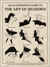 Gallery print  The Art of Shadows - Mary Urban
