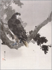 Gallery print  Eagle in a Tree - Watanabe Seitei